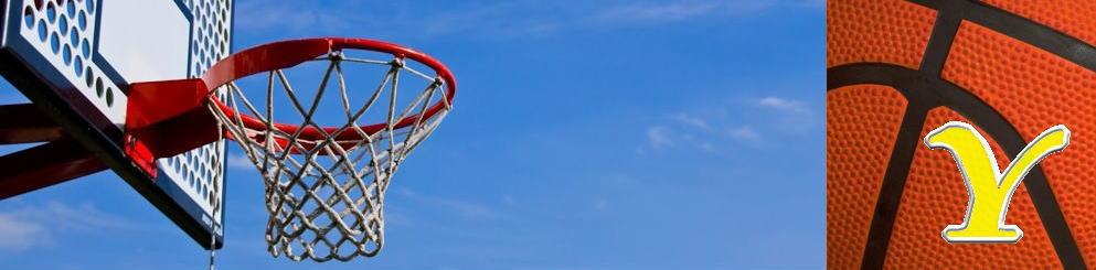 山梨県家庭婦人バスケットボール連盟